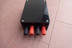 Yuan-Jing TPA3116 Class D amp 3